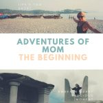 Adventures of Mom: The Beginning