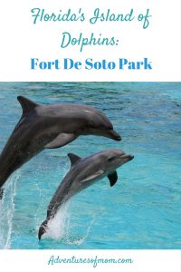 Fort De Soto: Florida's Island of Dolphins