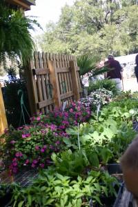 FL Master Gardener Festival in Ocala