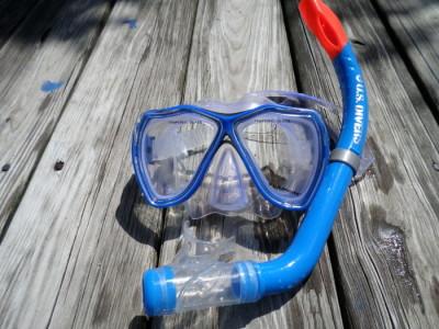 Snorkeling in the Gulf Coast