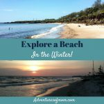 Explore a beach- in the winter!