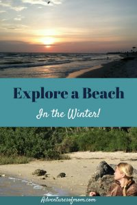 Explore a Beach in the Winter!