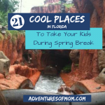 21 Cool Places to Take Your Kids During Spring Break (Florida)