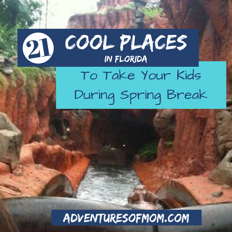 21 Cool Places To Go With Kids During Spring Break In Florida