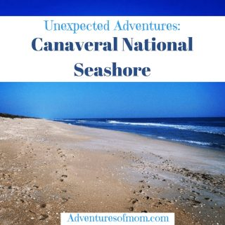 Unexpected adventures at Canaveral National Seashore