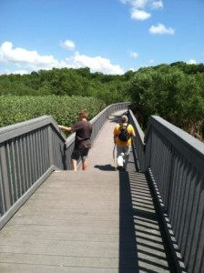 new boardwalks at Black Bear Wilderness Area in Sanford, FL