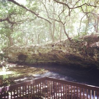 Grotto overlook at Scott Springs Park in Ocala