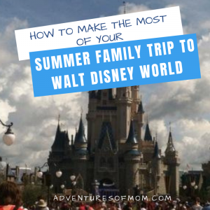Making the Most of Your Summer Family Trip to Walt Disney World