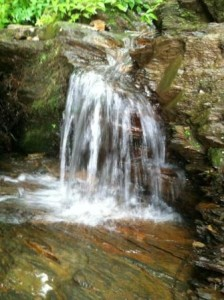Waterfalls were everywhere at Great Smoky Mountain National Park