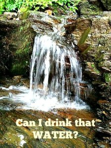 Water in the back country: can I drink that?