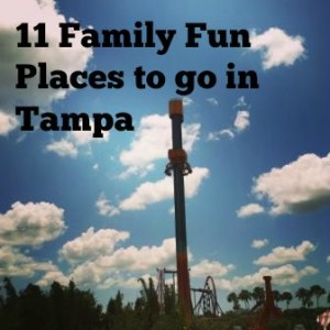 Adventures Of Mom Family Fun in Tampa