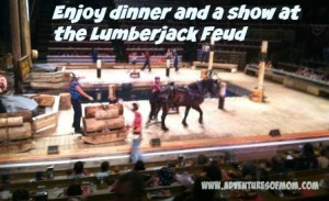 Dinner and a show at the Lumberjack Feud