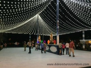 The downtown Ocala Skating Rink opened up during the Light Up Ocala 2015 celebrations.