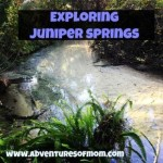 Adventures of Mom visits Juniper Springs in the Ocala National Forest