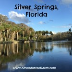 A quick peek at Silver Springs State Park