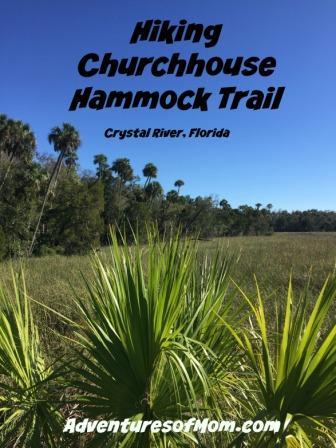 Hiking Churchhouse Hammock Trail in Crystal River, Florida