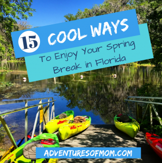 15 Cool Ways to Spend Your Spring Break in Florida