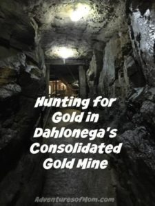 Hunting for Gold in Consolidated Gold Mine