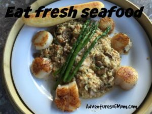 Scallops on a mushroom risotto