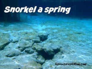 Snorkeling Florida springs.