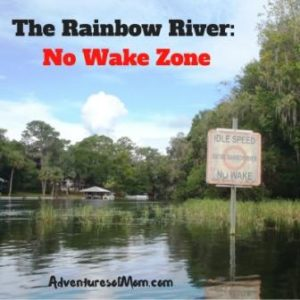 Kayaking on Florida's Rainbow River