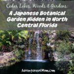 A secret Botanical Garden in North Central Florida