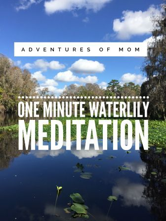 One Minute Water Meditation