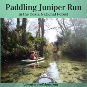 Paddling Juniper Run in the Ocala National Forest