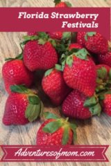 celebrating Florida's Strawberry Festivals