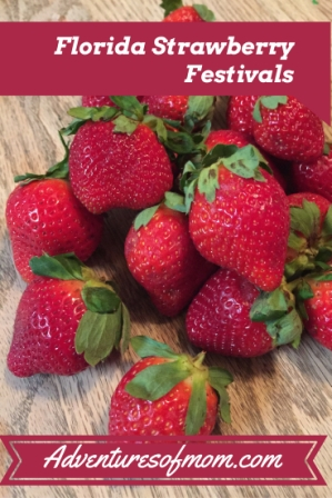 celebrating Florida's Strawberry Festivals