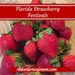 Florida Strawberry Festivals