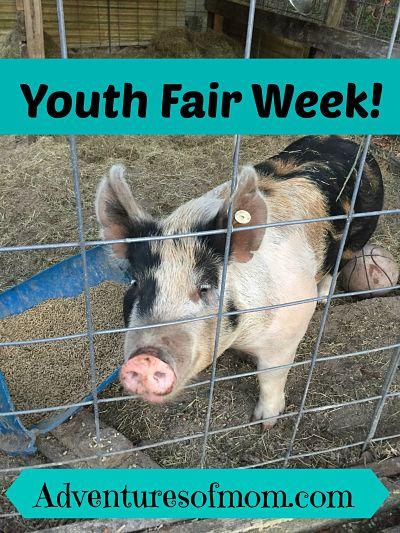 Youth Fair Week!