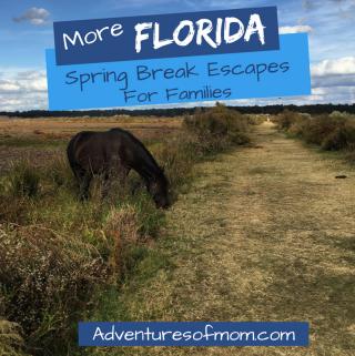 More Florida Spring Break Escapes for Families