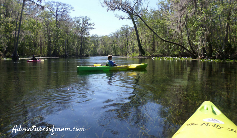 Family paddle adventures on Florida's Silver River