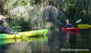 Kayaking on Florida's Silver River
