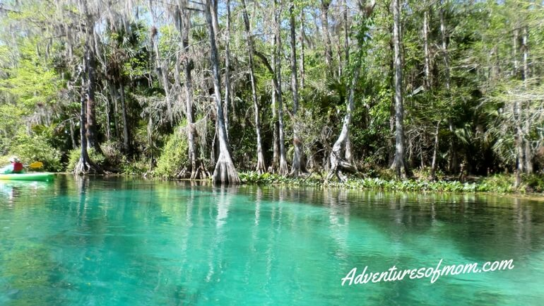 Kayaking Florida's Silver River
