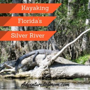 Kayaking on Florida's Silver River