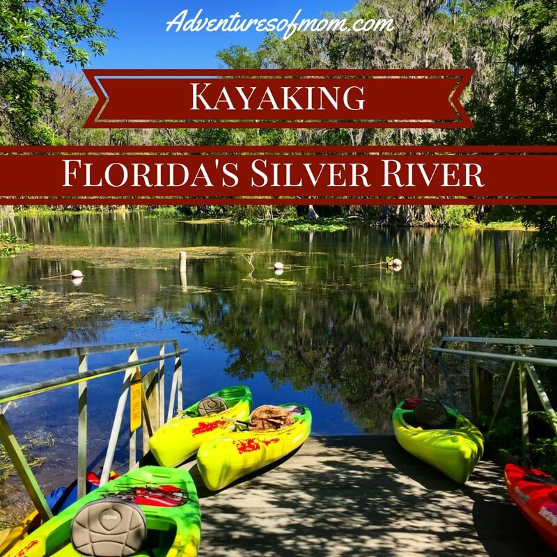 Kayking with Monkeys on Florida's Silver River