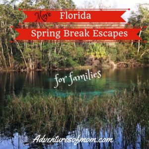 More Florida Spring Break Escape Ideas for Families