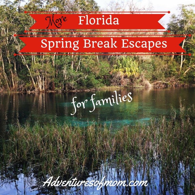 More Florida Spring Break Escape Ideas for Families