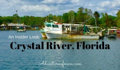 An insider guide to Crystal River, Florida