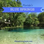 Adventures at Florida's Blue Springs