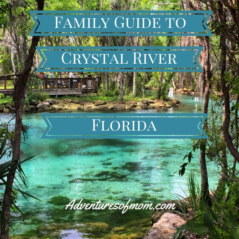 The Ultimate Family Guide to Crystal River