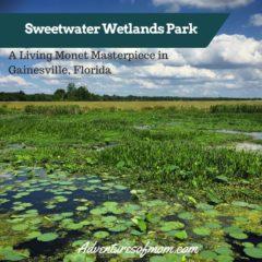 Sweetwater Wetlands Park https://adventuresofmom.com