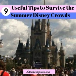 9 Ways to Make your Disney Trip Easier