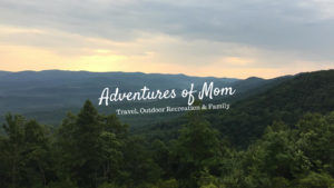 https://adventuresofmom.com