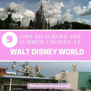 Ways to beat the summer crowds at Disney World