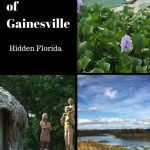The Best of Gainesville, Florida: Hidden Gems in the Swamp