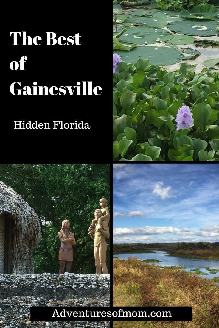 The Best of Gainesville, Florida: Hidden Gems in the Swamp