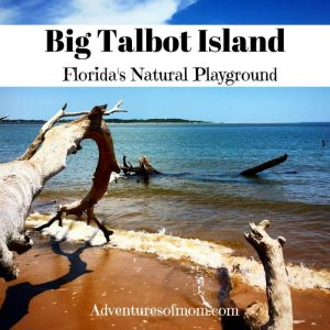 Big Talbot Island: Florida's Natural Playground